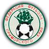 Президент Федерации футбола Приморского края так и не был выбран